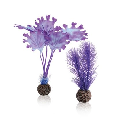Oase Biorb Kelp Set S Purple