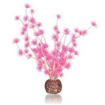 Oase biOrb Bonsai ball Pink